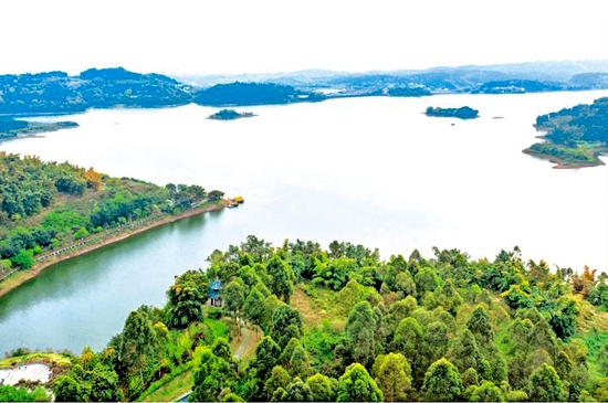 隆昌河流域污染综合治理和绿色生态系统建设与保护为抓手,推动水环境